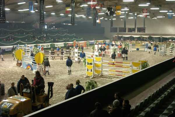 3 days showjumping at BWP Auction Antwerp